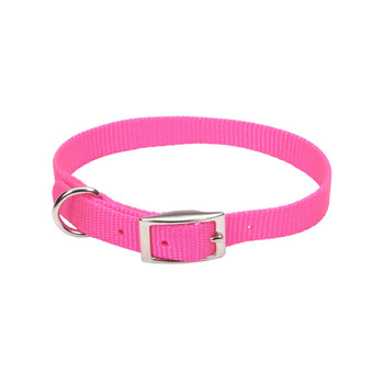 Coastal Single-ply Nylon Collar Neon Pink 5/8x16in