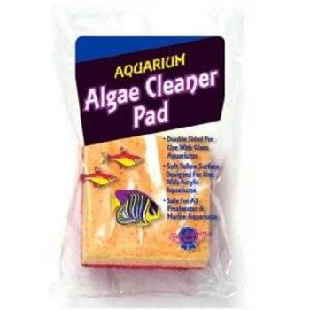 Blue Ribbon Algae Cleaner Sponge Double Sided