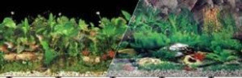 Blue Ribbon Vibran-sea Double Sided Background Black & Freshwater Tropical 24x50ft