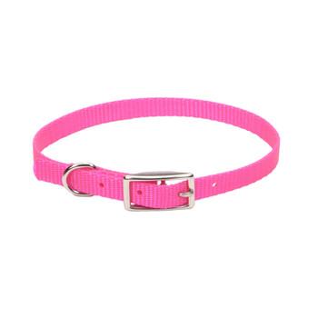 Coastal Single-ply Nylon Collar Neon Pink 3/8x12in