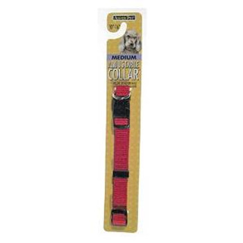Aspen Pet Core Nylon Adjustable Dog Collar Red 5/8in X 10-16in