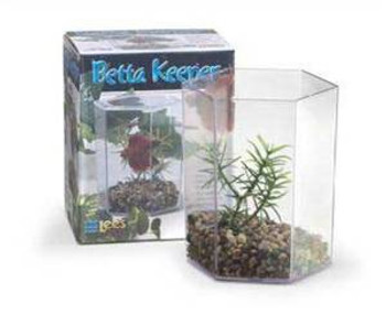 Lee's Betta Keeper W/lid Gravel And Plant Small