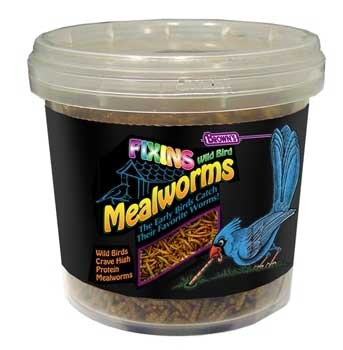 F.M. Brown's Brn Fixins Mealworms Tub 7 Oz-90678