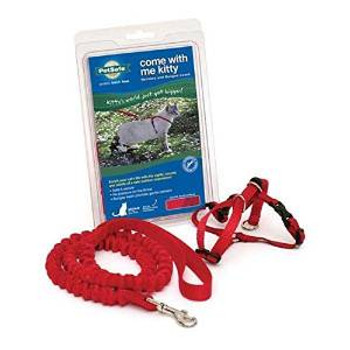 Pet Safe Premier Come With Me Kitty Harness & Bungee Leash Medium Red
