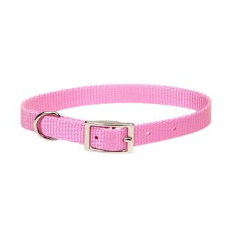 Coastal Single-ply Nylon Collar Bright Pink 5/8x12in