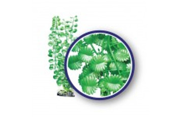 Weco Freshwater Series Japanese Cress 18in