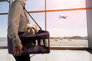 """Travel in comfort and style with the Sherpa Original Deluxe pet carrier. The Original Deluxe is perfect for traveling by plane or car, for a trip, or just to the vet. Featuring top and side entry, a dual seatbelt / luggage strap, locking zippers, m"""""""