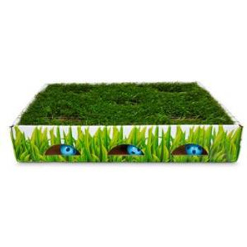 Pet stages Grass Patch Hunting Box Invironment Cat Toy
