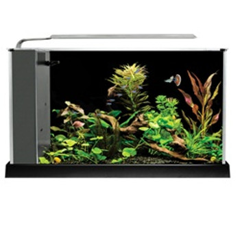 Fluval Spec V Aquarium 5 Gallon{requires 3-7 Days before shipping out}