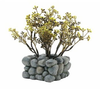 Fluval Chi Plant W/pebble Base Ornament {requires 3-7 Days before shipping out}