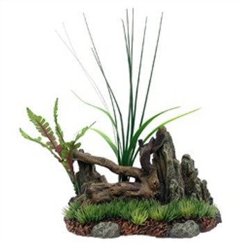 Marina Driftwood Rock Plants Medium {requires 3-7 Days before shipping out}