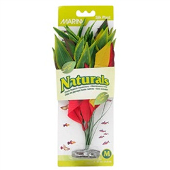 Ma Ntrl Red/yellow Dracena Silk Plant Md {requires 3-7 Days before shipping out}