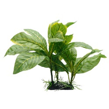 Fluval Striped Spathiphyllum Plant 9in{requires 3-7 Days before shipping out}