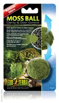 Exoterra Moss Ball {requires 3-7 Days before shipping out}