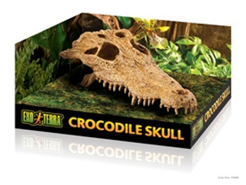 Exo-terra Terrarium Decor Croc Skull {requires 3-7 Days before shipping out}