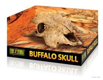 Exo-terra Terrarium Decor Buffalo Skull {requires 3-7 Days before shipping out}