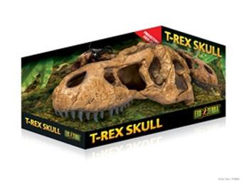Exo-terra Terrarium Decor T-rex Skull{requires 3-7 Days before shipping out}