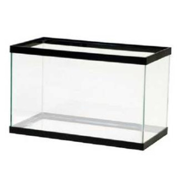 """Aqueon 10 gallon Blk Tnk 20x10x12"""" Store Pick Up Only NO Shipping"""