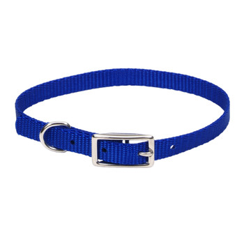 Coastal Single-ply Nylon Dogcollar Blue 3/8x12in