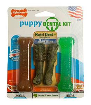 Nylabone Dntl Pup Pack 4pc