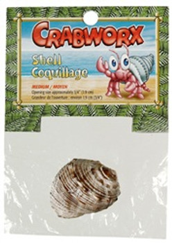 Crabworx Medium Shells-v {requires 3-7 Days before shipping out}