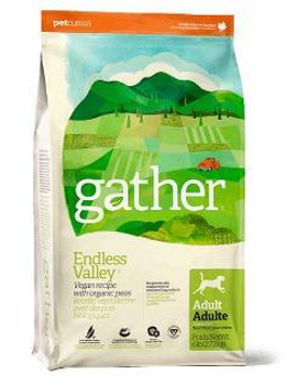 Gather Endlss Vlly Dog 16#