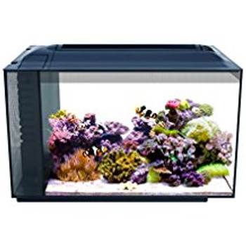 Don't Let Its Size Fool You. The Fluval Sea Evo Packs The Same Performance Features As A Tank Several Times Its Size, But Is Small Enough To Fit On Any Desk Or Counter Top.   A Super Bright 14000 K Led Provides Optimal Conditions For Healthy Coral Growth,
