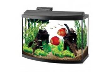 Aqueon Deluxe LED Aquarium Bow Kit 36gal