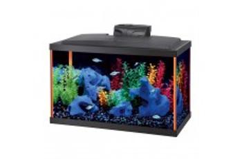Aqueon NeoGlow LED Aquarium Kit Orange 10gal