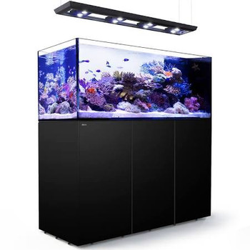 If you're looking to add the distinctive beauty of a Peninsula-style coral reef aquarium to your home or office, you don't need a custom-built system to do so. Red Sea's new REEFERƒ?› Peninsula brings color and ambiance to any living or office space at a fraction of the cost of a custom installation.Available in 125cm (49.2ƒ??) long/ 500 liter (132 gal) or 160cm (63ƒ??) long/650 liter (173 gal), the REEFERƒ?› Peninsula offers an impressive and elegant room divider solution with all of the features of our advanced REEFER systems. A rimless, ultra-clear glass coral reef aquarium is formed into a perfect peninsula that gives you a fascinating view from all three sides, adding complexity and intrigue to any reefscape.The REEFERƒ?› Peninsula Deluxe incorporates the all-new Hydra 26ƒ?› HD LED lighting units with Red Sea's customized hanging system into the Reefer reef ready systems in a convenient single package. The Hydra 26ƒ?› HD unit provides the most up to date LED technology, offering a full spectrum, 7 color LED configuration giving great color rendition and a multitude of lighting effects. The revolutionary control system dynamically adjusts the power available to each color by utilizing power not being used with other colors, effectively enabling selected channels to be ƒ??boosted' to above 100% output. The lighting is fully controllable via the built-in WiFi which is compatible with iOS and Android devices, and with any wifi-enabled Mac or PC.REEFERƒ?› Peninsula Deluxe is available for both the 500 & 650 models with 3 and 4 LED units respectively.