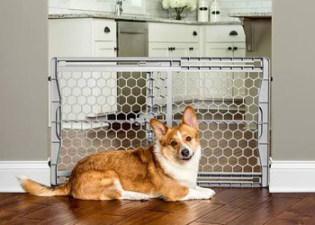 Made of high quality plastic, the pet gate stands at 23  and is designed to easily step over.  The pressure-mount system with rubber bumpers are gentle on your walls and make installation simple.  The gate expands in seconds to fit openings between 2""