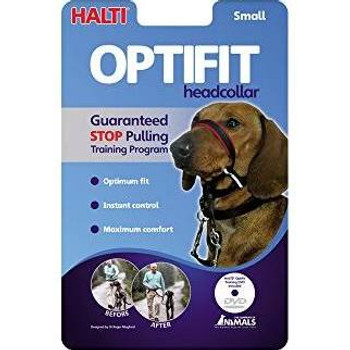The Company Of Animals Dog Halti Optifit Small {L-x}