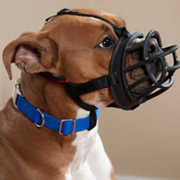 """Easy-to-Fit Dog Muzzle The Company Of Animals Baskerville Ultra Muzzle is a well-designed product for safety, convenience and comfort.  The material used in this muzzle is tough and durable.  It's ergonomically designed with safety straps that keep t"""""""