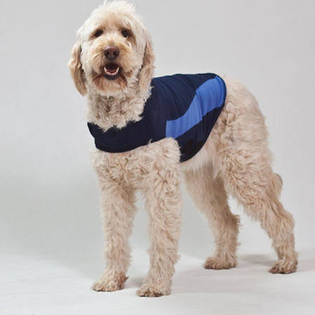 """The Thundershirt Is The Best Solution For Dog Anxieties Caused By Thunderstorm, Travel, Separation And Much More.  Thundershirt Uses Gentle Hugging To Calm Your Dog.  With Its Patented Design, Thundershirt S Gentle, Constant Pressure Has A Dramatic C"""""""