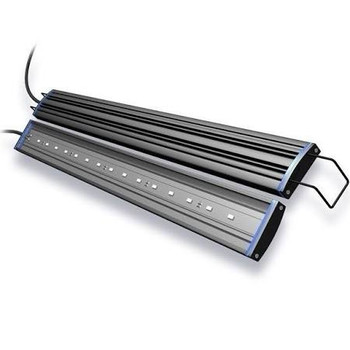 Designed as accent lighting for freshwater aquariums, the Reno LED includes adjustable frame mounts for aquariums between 19.5 and 23.5 inches long. Includes 6 ft power cord with on/off rocker switch and UL approved low-voltage power adapter. LED #;s a