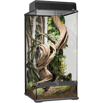This New Size Of Extra Tall Exo Terra Glass Terrarium Is Ideal For Arboreal Reptile And Amphibian Species! It's Unique Rooted Background Makes It A Great Habitat For A Number Of Tree Dwelling Species Like Tree Boas - Pythons, Day Geckos, Leaf-tailed Gecko