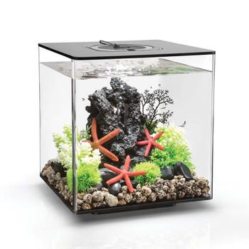 biOrb CUBE 30 with Multi-Color Remote Aquarium Kit Black 8gal