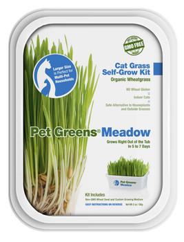 Bellrock Pet Greens Meadow Self Grow Tub