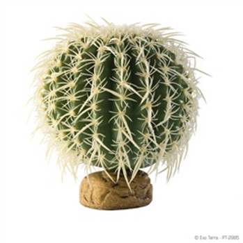 Exo-terra Plant Medium Barrel Cactus {requires 3-7 Days before shipping out}