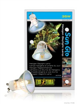 Exo Terra Sun-glo Halogen Lamp 35w{requires 3-7 Days before shipping out}