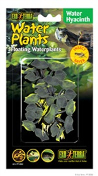 Exoterra Water Plant Hyacinth{requires 3-7 Days before shipping out}