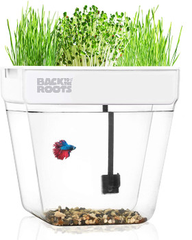 The Water Garden is an award-winning, self-cleaning fish tank that grows organic herbs   microgreens on top! In this closed-loop, mini aquaponic ecosystem, the fish waste fertilizes the plants and the plants clean the water! It #;s the perfect gift, co