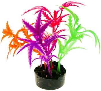 GLOWS under black light Brilliantly colored, this gravel base plant anchors nicely, with soft plastic leaves   branches that are sturdy enough to stand up on their own, but soft enough to sway in the water. Safe for fresh or salt water.