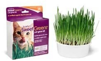 Certified organic sweet greens grown at home, just add water for a healthy treat cats love