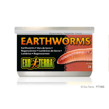 Exo Terra Canned Earthworms, 1.2 oz