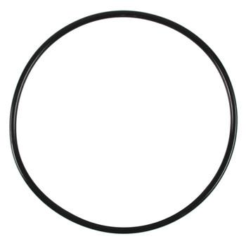 Fluval Motor Seal Ring 307/407 {RR}