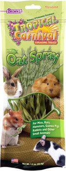 FM Brown's Tropical Carnival Natural Oat Spray Foraging Treat 1.5 oz