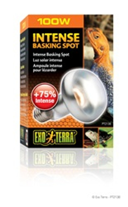 Exo Terra Intense Basking Spot Lamp 100w {requires 3-7 Days before shipping out}