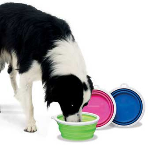 Bamboo Fat Cat Silicone Travel Bowl - 3 Cup Tray