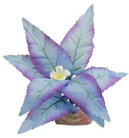 Blue Ribbon Colorburst Florals Flowering Broad Leaf Cluster 3.5-4in